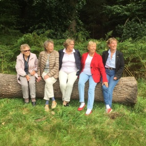 the5sisters